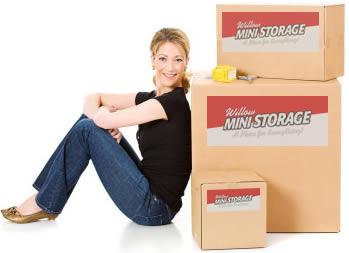 willow mini storage boxes